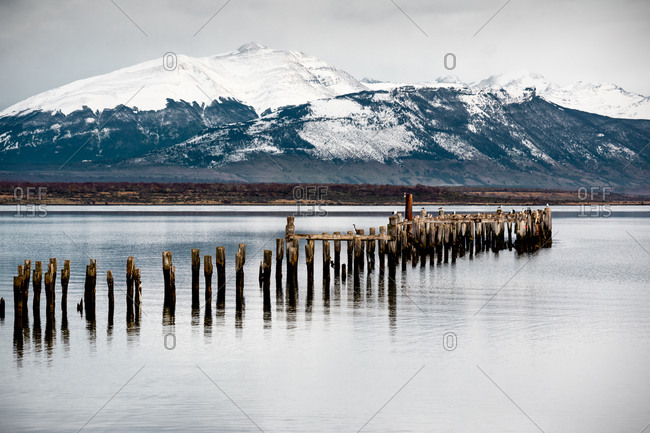 Old wooden pillars of broken pier and breakwaters in tranquil water against snowy mountains under gray cloudy sky in winter