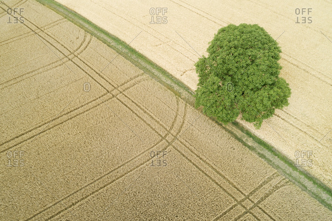 Germany- Baden-Wurttemberg- Drone view of vast countryside fields in summer