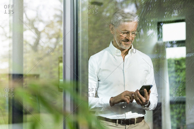 Senior man with grey hair in modern design living room typing on smartphone