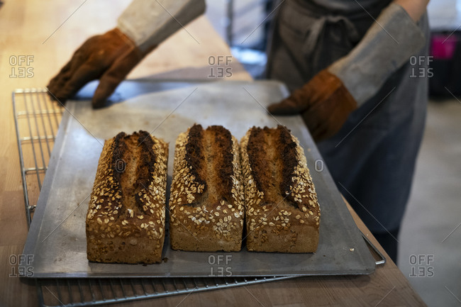 Close up of person holding tray with freshly baked seeded loaves of bread in an artisan bakery.