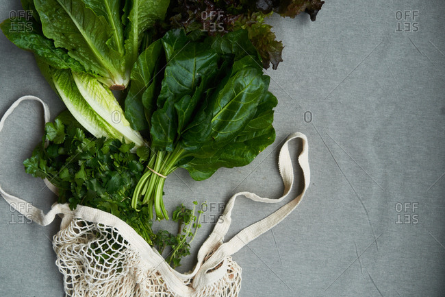 Fresh produce with mesh sack on gray background