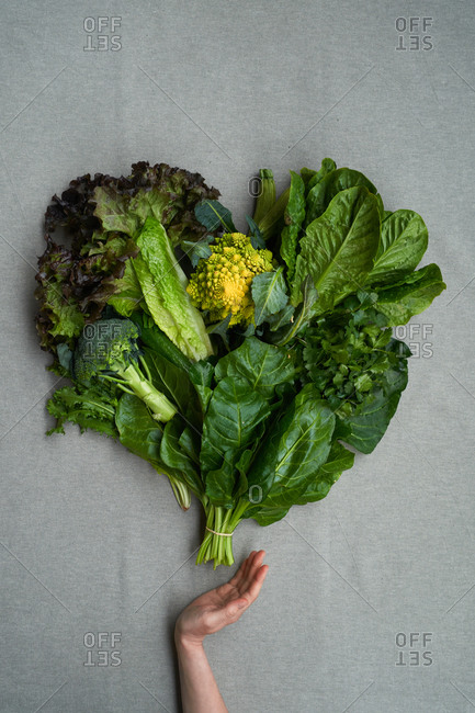 Woman's hand holding a bunch of leaves and broccoli on gray background