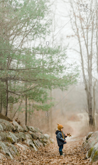 Little boy standing the woods holding a leaf