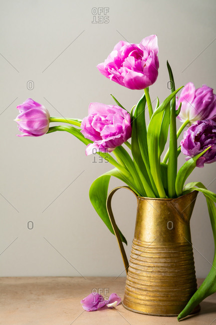 Bouquet of tulips in metal pitcher
