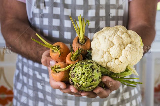 Farmer holding fresh vegetables at the market