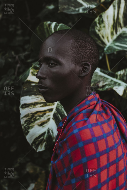 Maasai Man in traditional clothes standing in front of green leaves