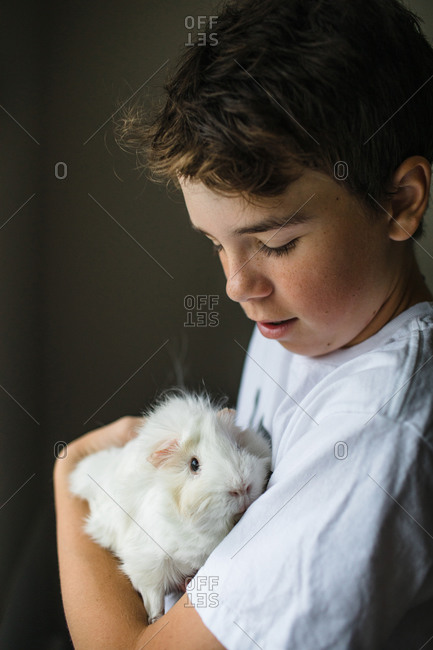 Teen boy with his pet guinea pig