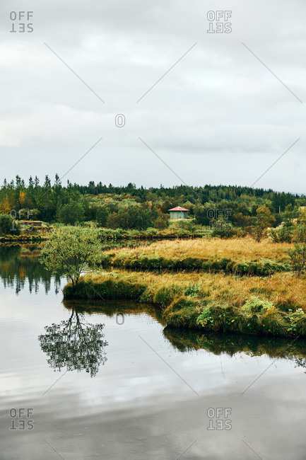 Rural landscape of tranquil green coast of lake