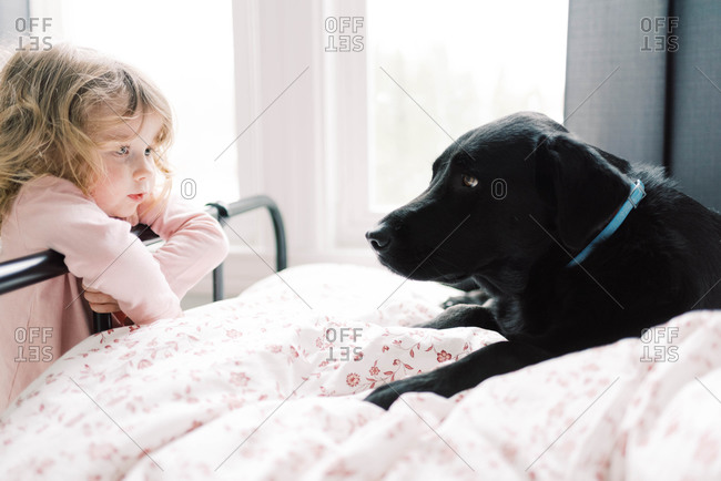 A little girl and her black Labrador.