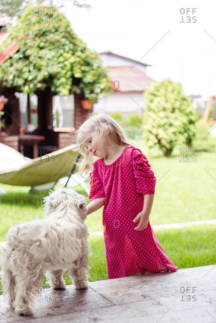 A little cute girl in the yard is playing with a white small dog