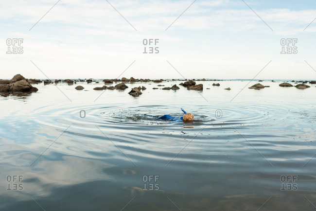 Young curly haired child snorkeling in New Zealand