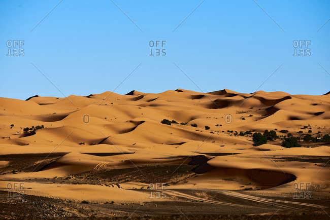 Dunes in the desert, textures and color