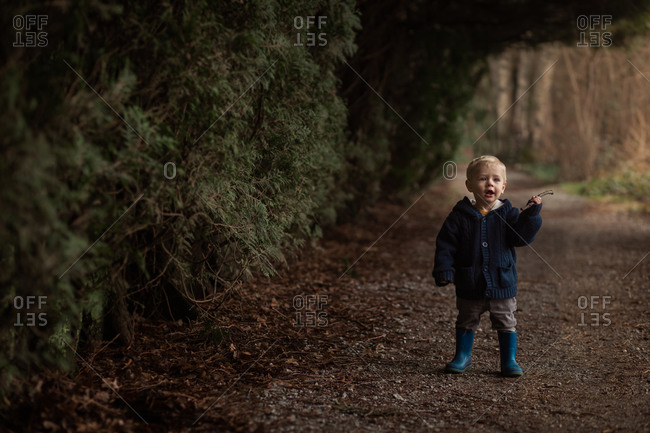 Blonde toddler boy walking on path in the woods