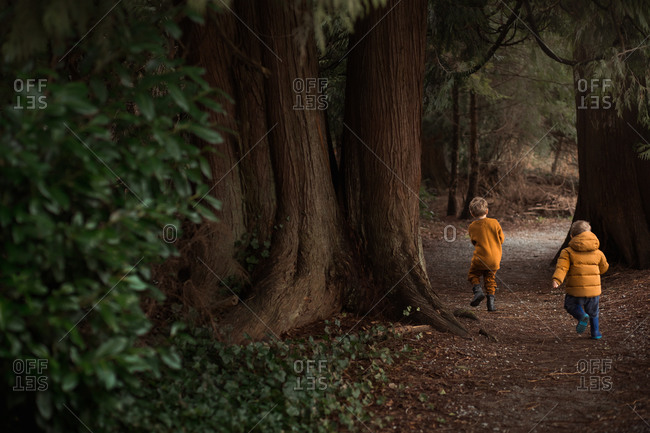 Little boy chasing his brother on a path in the forest
