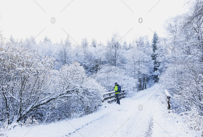 Germany- North Rhine-Westafalia- Male hiker admiring snow-covered landscape of Eifel National Park