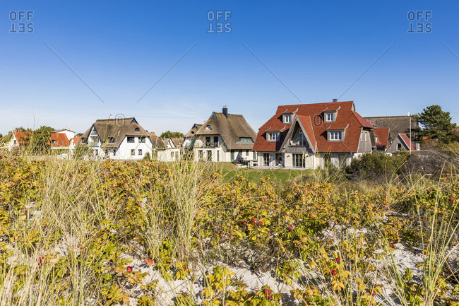 Germany- Mecklenburg-Western Pomerania- Vitte- Coastal flora with summer houses in background
