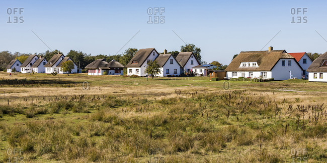 Germany- Mecklenburg-Western Pomerania- Neuendorf- Grass in front of village houses in spring