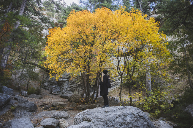 Young woman on boulder in autumn forest
