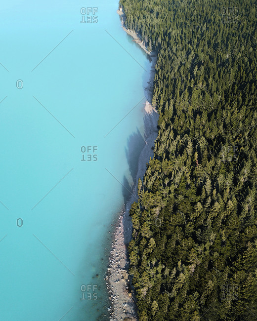 Aerial view of evergreen trees and glacial water at the edge of Lake Pukaki, Canterbury Region, South Island, New Zealand