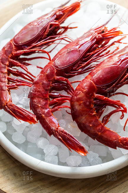 Three cooked red prawns on ice