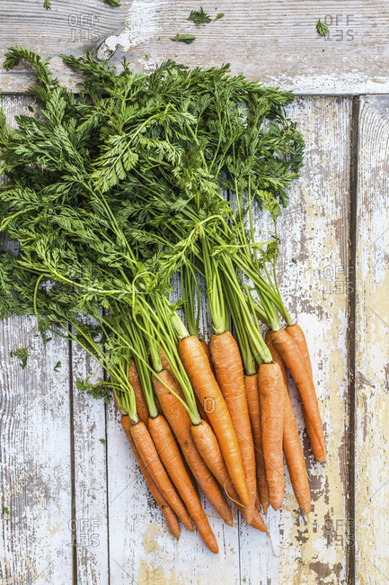 A bunch of fresh carrots on a wooden background.