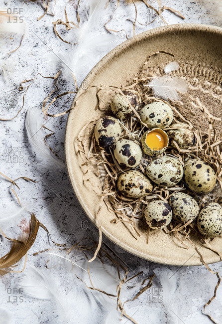 Quail eggs in a brown ceramic bowl, one egg is cracked open, and feathers are around the bowl.