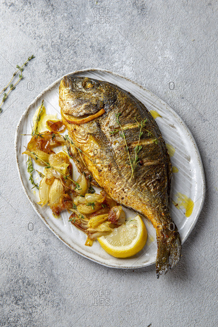 Grilled sea bream or dorada on gray plate. Gray background.