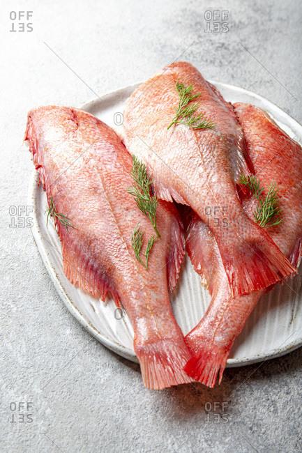 Fresh red raw seabass on a platter