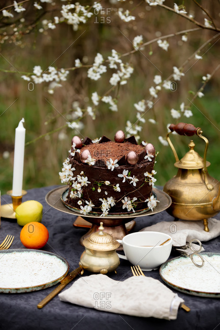 Teapot, cake and cups ready for tea time in the garden in spring among the flowering trees