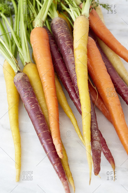 Variety of heirloom carrots on white countertop