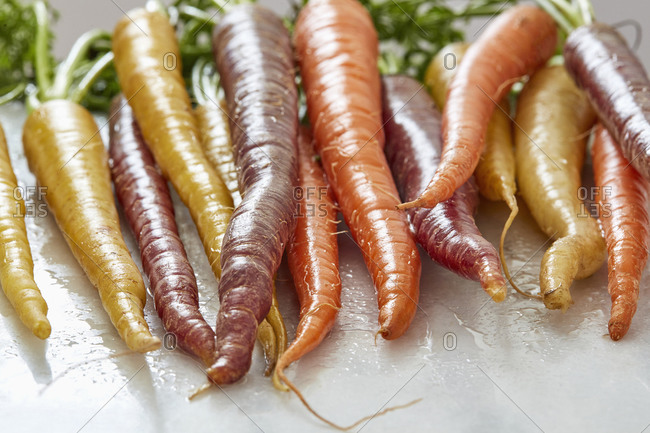Close-up of freshly washed heirloom carrots