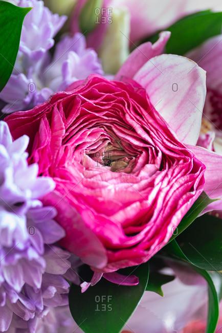 Macro view of pink flower
