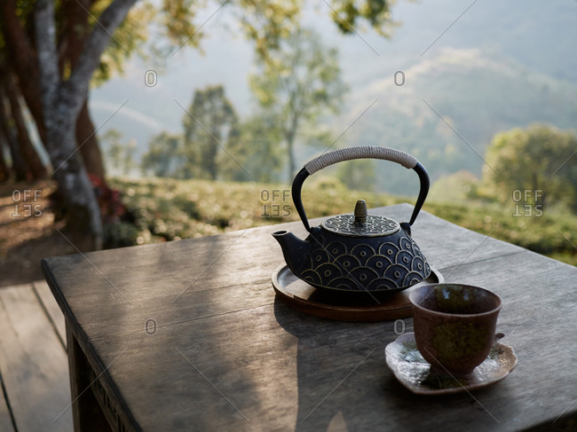 Teapot And Teacup On The Table In Garden