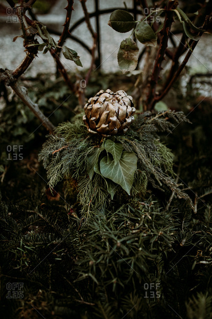 Garden decoration with golden artichoke laying on top of green leaves