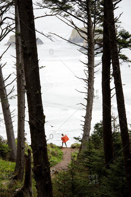 A solo traveler takes in the scenic coastline view