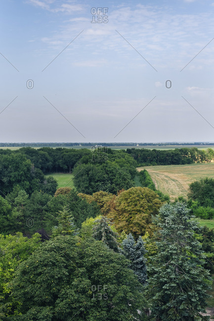 View over country landscape with lush green forest