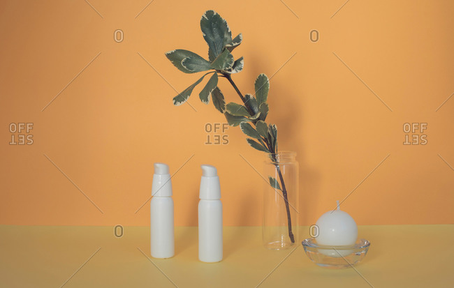 Leafy branch beside a round candle and two cosmetic bottles