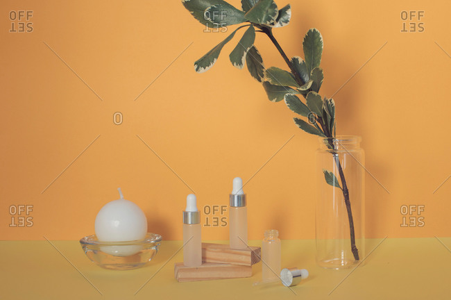 Leafy branch beside a round candle and dropper bottles