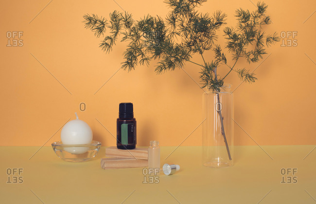 Leafy branch beside a round candle and essential oil bottles