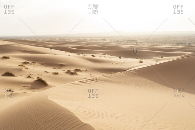 Sand dunes in Sahara Desert- Merzouga- Morocco