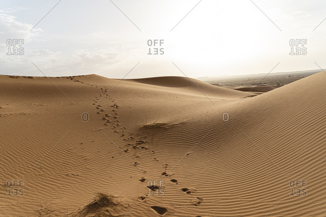 Footprints in sand dunes in Sahara Desert- Merzouga- Morocco