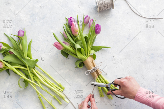 Hands of woman preparing bouquet of purple blooming tulips