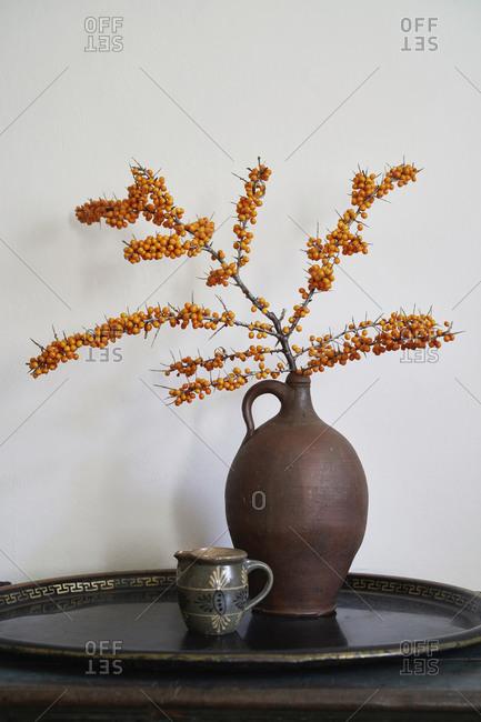 Orange Sea Buckthorn plant in vase on tray