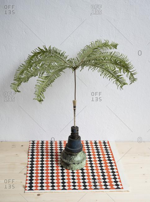 Still life tropical plant in unique vase