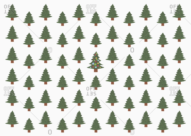 Illustration of green Christmas tree in forest