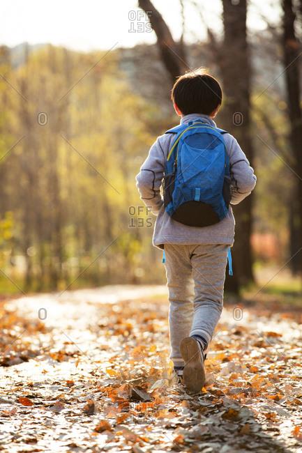 The back of back schoolbag boy walking outdoors
