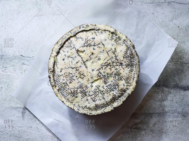 Studio shot of blue cheese wheel