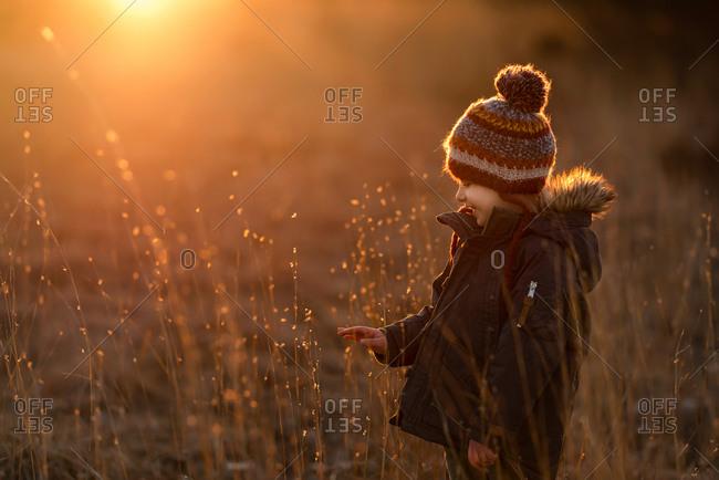 Little boy in winter gear touching plant in golden haze as sun sets behind him