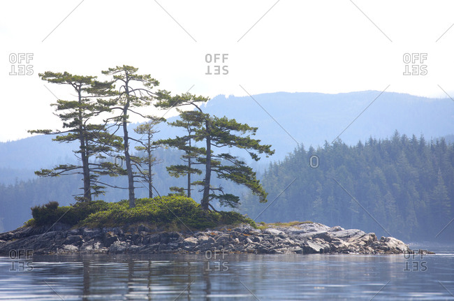 Small island with a few pine tress in mid-day, Port McNeil, Vancouver Island, British Columbia, Canada