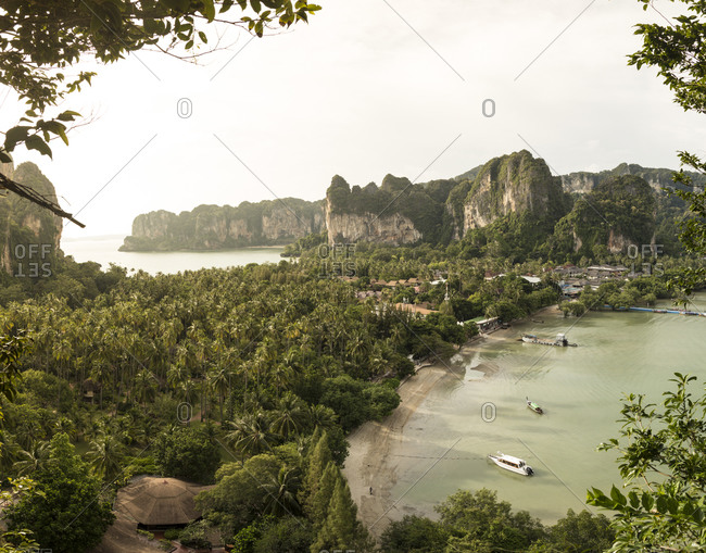 High angle view of palm tree plantation at Railay Beach during sunset